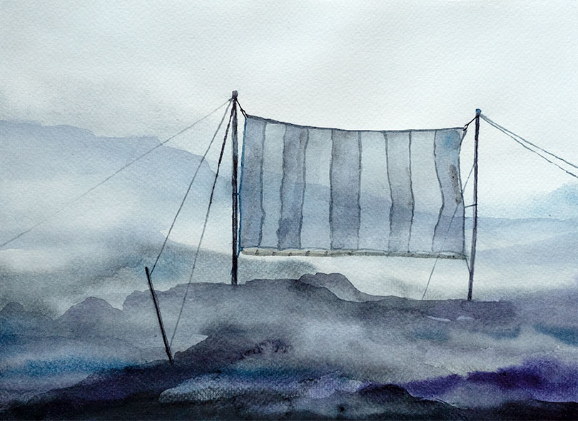 peruvian fogcatcher watercolor drawing by alexander glandien
